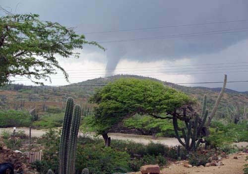 Aruba Whirlwind.jpg