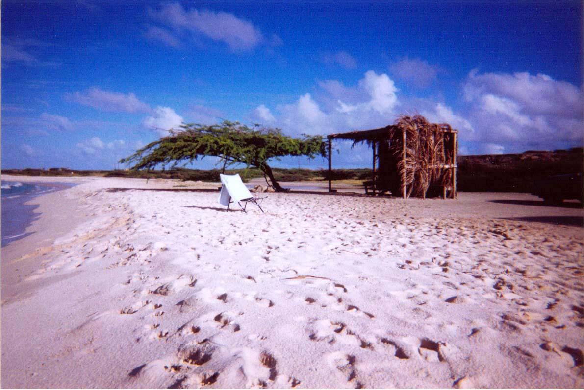 Beach Chair 1.jpg