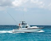 Boat: Mahi Mahi a Hatteras Sportfisherman 42ft