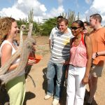 Aruba Ostrich Farm