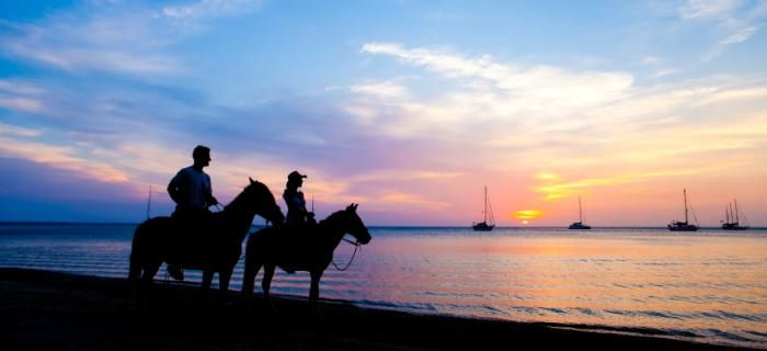 A private horseback riding tour at sunset
